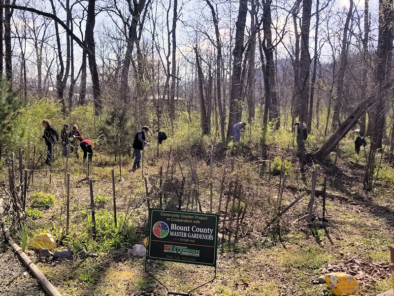 March 2019 Workday at the Townsend River Walk & Arboretum