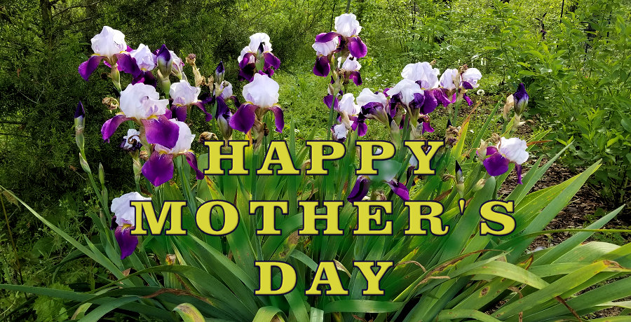Townsend River Walk & Arboretum Wishes You a Happy Mother's Day!