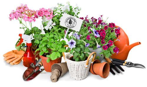 2021 Tuckaleechee Garden Club Plant Sale - April 29 thru May 1