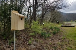 Bluebird House Addition