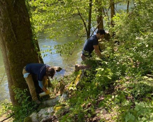 Community Partners Assist in Invasive Removal and Cleanup - May 9, 2020