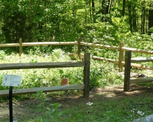 Pollinator & Memorial Garden Fence Completed.  May 2, 2020
