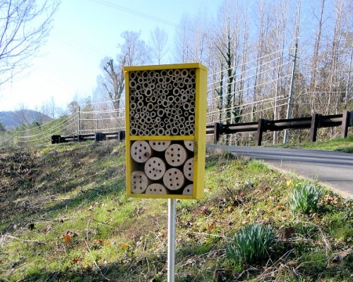 Pollinator House Installed: Mason Bees Wanted