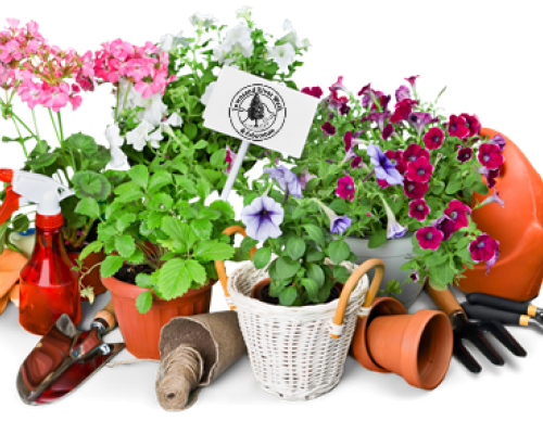 2021 Tuckaleechee Garden Club Plant Sale - April 29 thru May 1